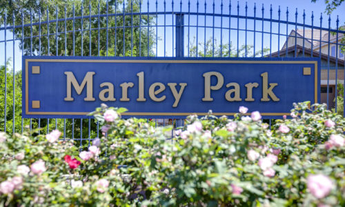 Marley Park Homes for Sale and Recently Sold
